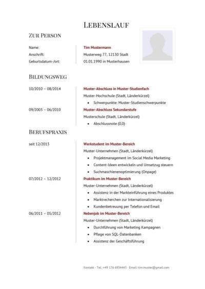 Lebenslauf Muster Vorlage Manager 1