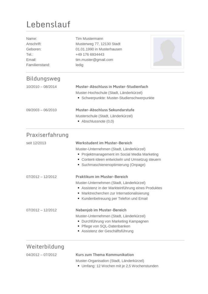Lebenslauf Muster Vorlage 20 Informatiker 1