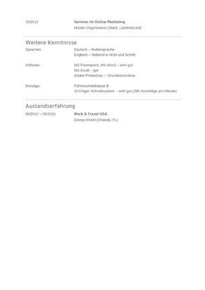 Lebenslauf Muster Vorlage 20 Informatiker 2
