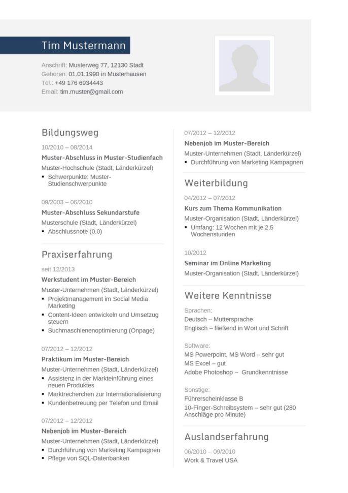 Lebenslauf Muster Vorlage 32 Informatiker