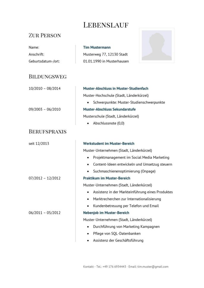 Lebenslauf Muster Vorlage 5 Manager 1