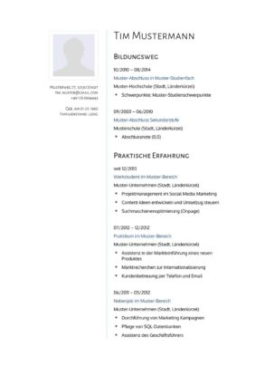 Lebenslauf Muster Vorlage 8 Psychologe 1