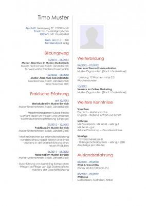 Lebenslauf Publisher