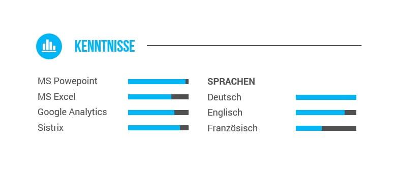 kenntnisse lebenslauf beispiel - Sprachen Im Lebenslauf